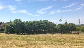 Green Gates Park opens – despite Coronavirus!